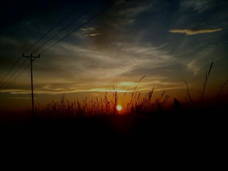Photo-0027